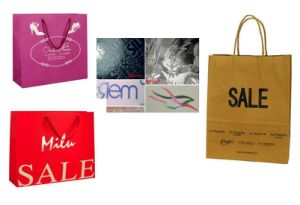 OEM Wholesale Fashion Cosmetic Packaging Paper Bag pictures & photos