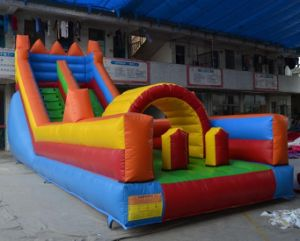 Top Sale Inflatable Sports Slide (JW0410) pictures & photos