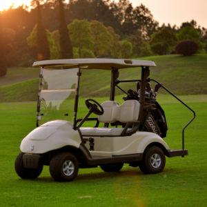 Best Selling 2 Seat Electric Club Car Golf Buggy