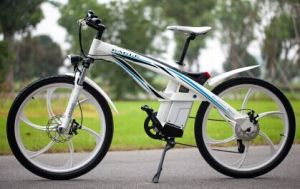 Electric Scooter Electric Bike (TDSBD579Z)