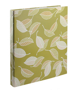 Colorful Printing Custom 2 Ring Binders A5 pictures & photos