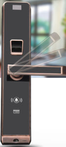 Fingerprint Door Lock with Finger Print Access Control (EFL-620P) pictures & photos