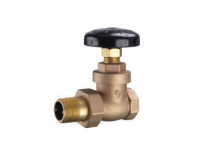 2 Ports Brass Stop Check Valve pictures & photos
