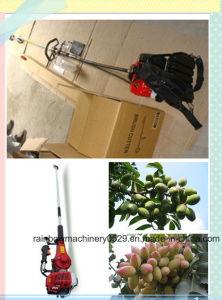 Best Selling Olive Picking Machine Olive Harvester (RBTS530)
