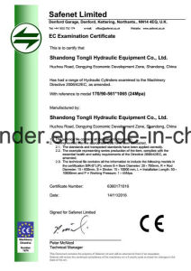 Hydraulic Cylinder for Volvo Excavator Ec210b pictures & photos