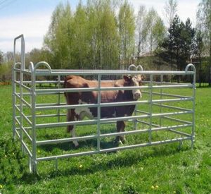 Australia Hot Dipped Farm Livestock Fence Gate pictures & photos
