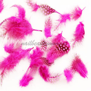Nail Art Manicure Feathers Decoration Beauty Products (M04)