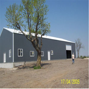 China Supplier Steel Building pictures & photos