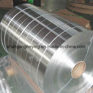 Hot Dipped Galvanized Steel Coil/PPGI/PPGL Color Coated Galvanized Steel Strip in Coil pictures & photos