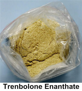 Parabolan Steroids Trenbolone Enanthate (Tren Enan) with Good Purity pictures & photos