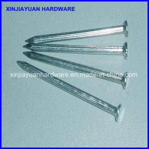 Smooth / Twisted Galvanized Concrete Nails pictures & photos