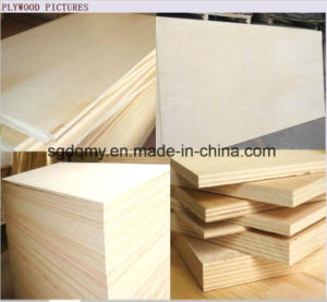 Furniture Grade Red Meranti Plywood with 1220X2440 pictures & photos