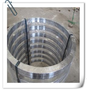 ASTM DIN Forged Heat Treatment Hot Rolled Ring Forging pictures & photos