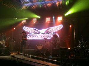 Portable Flexible LED Curtain with Light Weight and Easy Installation pictures & photos