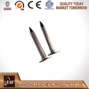 China Manufacturer Galvanized Roofing Flet Clout Nail pictures & photos