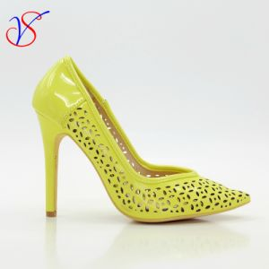 Sex Women High Heel Dress Shoes for Party Sv-Wf 001