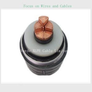66kv~500kv High Voltage XLPE Insulated Power Electric Cable pictures & photos