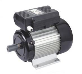 100% Hot Sale Yl Single-Phase AC Motor