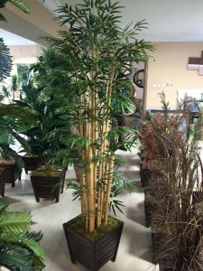 Best Selling Artificial Plants of Bamboo Gu-112130826 pictures & photos