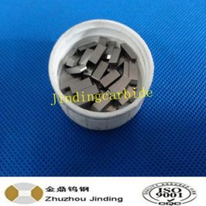 Tct Saw Tips Yg6X pictures & photos