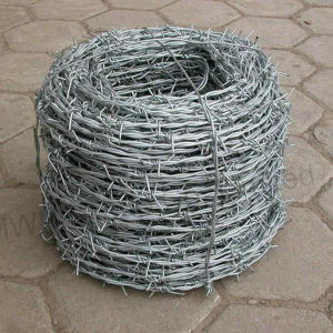 Cheap Price Military PVC Coated Barbed Wire Fence pictures & photos
