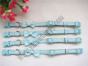 Rib Ribbon Dog Collar (C1421)