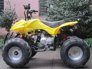 Quad Bike Equipped with Powerful Air Cooling Engine 110cc ATV (ET-ATV011) pictures & photos