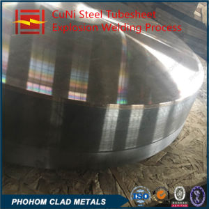 Tube Heat Exchanger Cladding Tubesheet pictures & photos