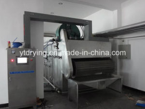 Dwvf Vegetable and Fruit Belt Dryer pictures & photos