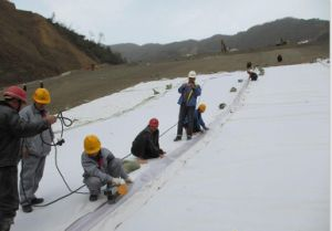 Polyester Non-Woven Geotechnical Geotextile Material for Engineering pictures & photos