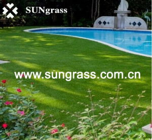 Artificial Lawn Carpet for Your Garden and Courtyard or Swimming Pool (SUNQ-HY00017) pictures & photos