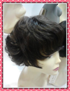 Hair Wig Short Size Full Lace Wig pictures & photos