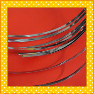 329 Narrow Stainless Steel Strip pictures & photos