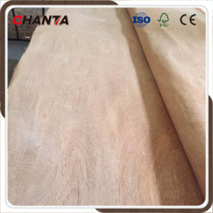Gurjan/Okoume/Bintangor/Plb Veneer for India Market pictures & photos