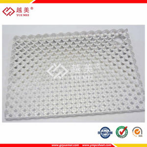 Clear Embossed Polycarbonate Prism Sheet pictures & photos