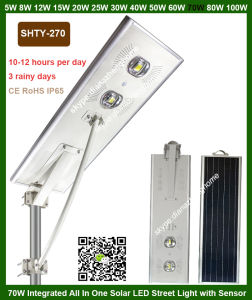 Cheap Price Outdoor IP65 Waterproof All in One Solar LED Street Light Lamp with PIR Motion Sensor pictures & photos