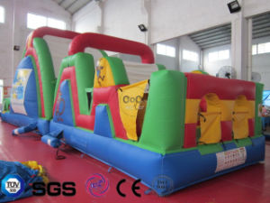 Coco Water Design Inflatable Colorful Obstacle Slide Castle LG9058 pictures & photos