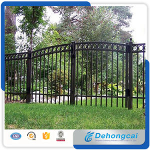 Wrought Iron Fence/Iron Fencing/ Steel Fence/Aluminium Fence/Fence Gate/Fence Panel/Garden Fence pictures & photos