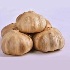 Good Taste Fermented Black Garlic 6 Cm Bulbs (14bulb/bag) pictures & photos