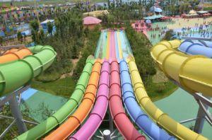 Slip Carpet Octopus Water Slide, Big Water Amusement Park Equipment (DL051) pictures & photos