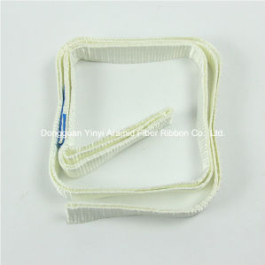 Acid Proof Polyester Industrial Belt Webbing pictures & photos