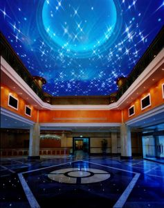 Fiber Optic Star Ceiling pictures & photos