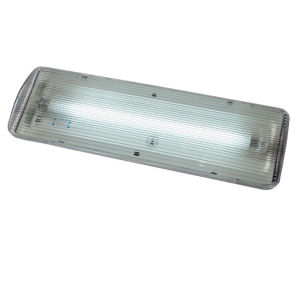 China Wall Mounted Fluorescent Tube 8W Emergency Lights (EF108AN) - China Emergency Light ...