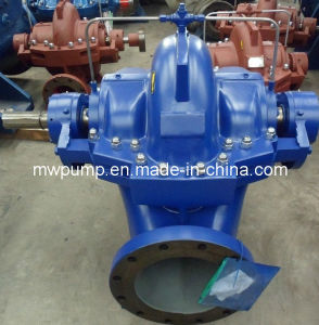Irrigation Water Pump pictures & photos