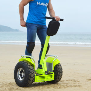 China Cheap Mini Two Wheel Mini Electric Scooter Mobility Scooter pictures & photos
