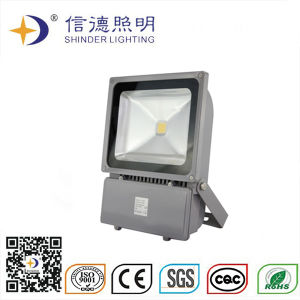 LED Flood Light 100W with CE and RoHS Certifications (SDFL110)
