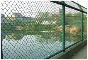 Professional Supplier of Chain Link Fence pictures & photos