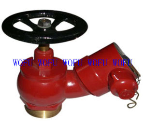 """2.5"""" Brss Landing Valve in Fire Hydran pictures & photos"""