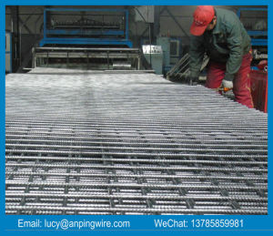 Concrete Reinforcing Welded Wire Mesh pictures & photos