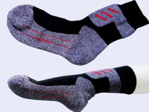 Men Sport Coolmax Hiking Socks pictures & photos